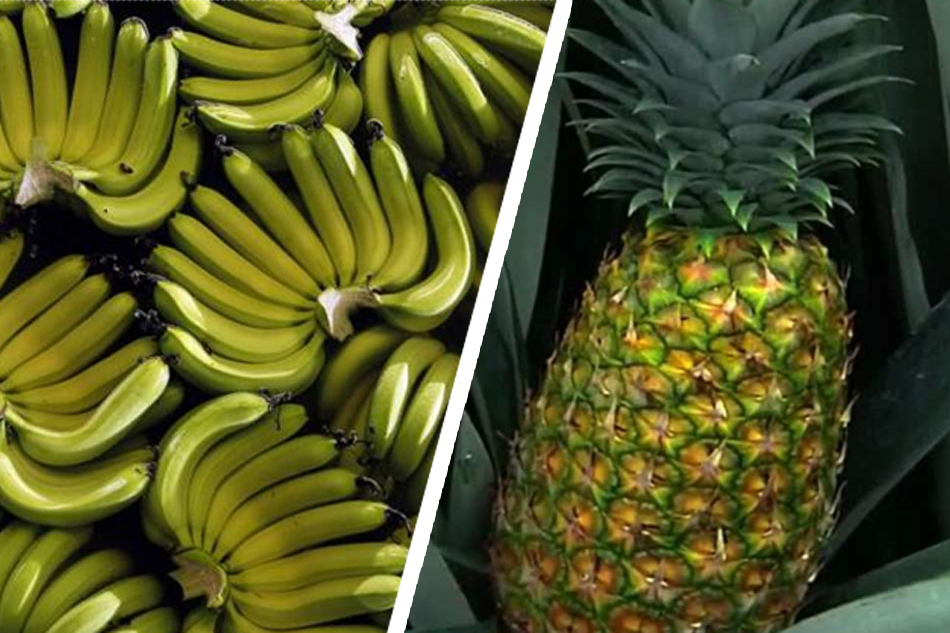 PH seeks to boost fruit exports to S. Korea