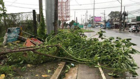 typhoon' Rolly